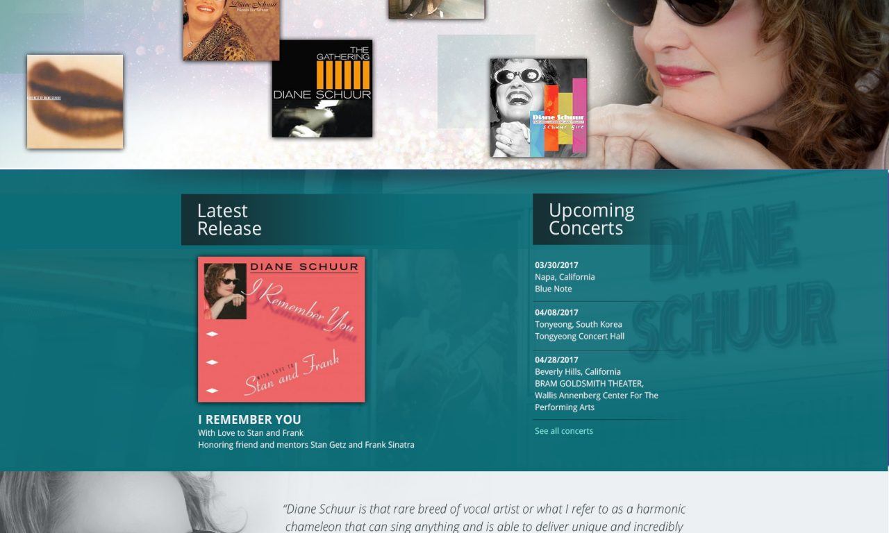 Diane Schuur Website Design
